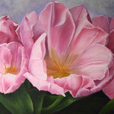 Karli's Tulips