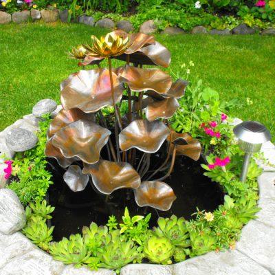 Secret Garden Lotus