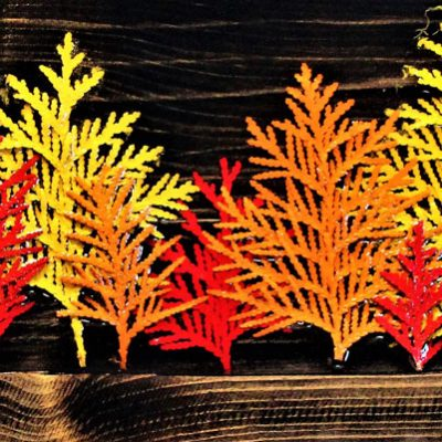 Fall Cedars
