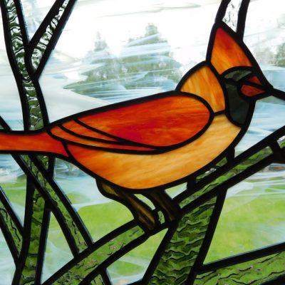 Male Cardinal - detail