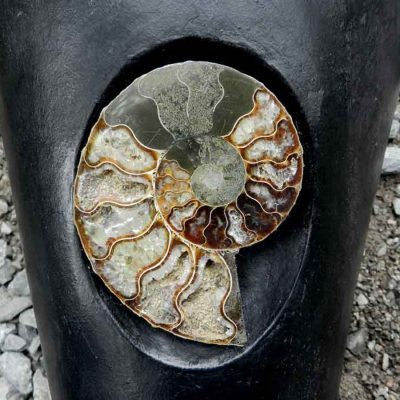 close-up-of-ammonite-urn