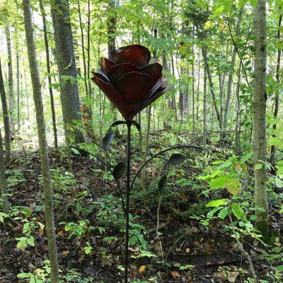 giant rose