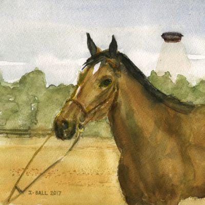Horse & UFO