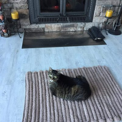 Cat-on-Mat