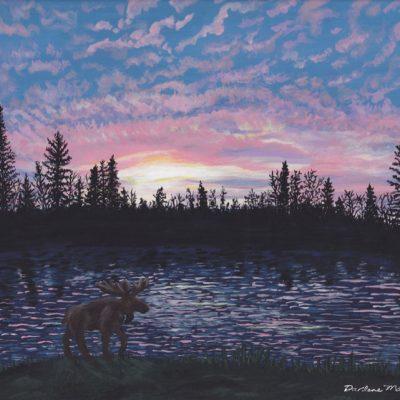 Moose at Sunrise