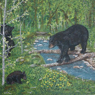 Spring Bears